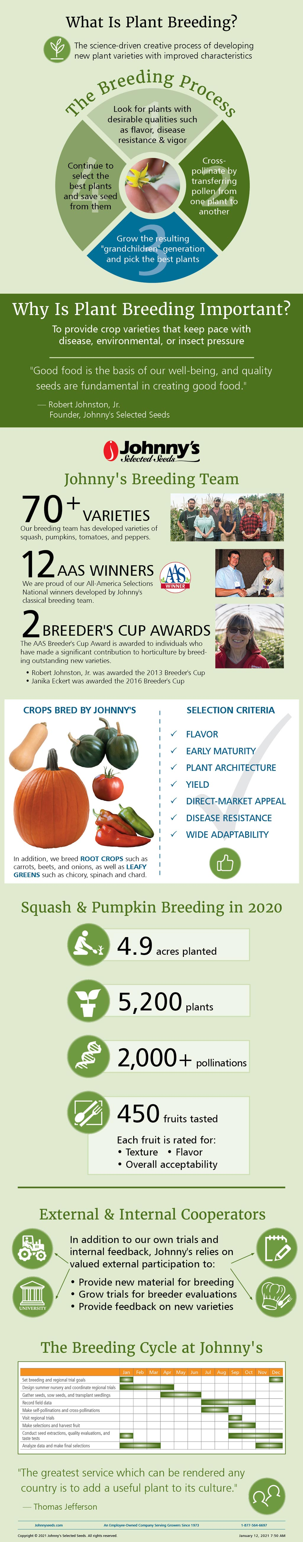 Plant Breeding at Johnny's Selected Seeds - Infographic