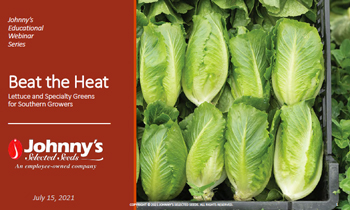 Lettuce & Greens for Southern Growers Webinar Recap/Slideshow • 53-pp PDF