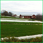 Pleasant Valley Farm in Argyle, New York