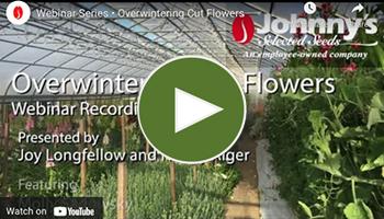 View the full  Overwinter Flower Webinar • VIDEO