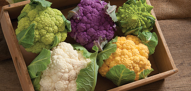 Johnny's Cauliflower Planting Program