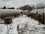 Year-round composting goes hand-in-hand with with year-round community building
