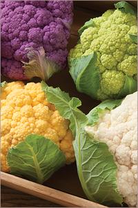 Cauliflower Varieties for Moderate Heat