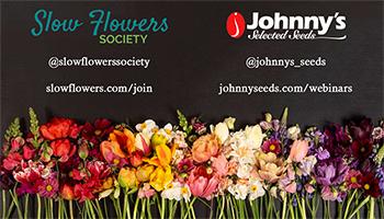 Slideshow: Floral Trends 2021 Recap - 15-pp PDF