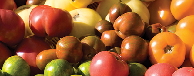 Grow Perfect Heirloom Tomatoes