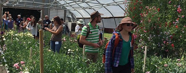 Student Organic Seed Symposium Tours Johnny's Flower Trials
