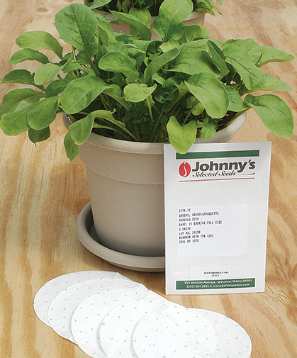 Arugula disk in its pot at maturity, with seed packet and disks.