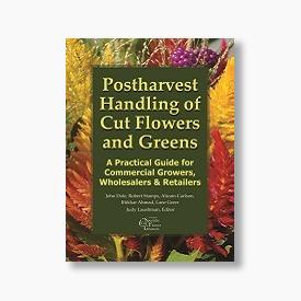 Postharvest Handling of Cut Flowers & Greens