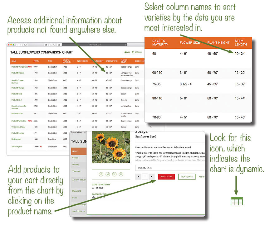 How to Use Our Comparison Charts