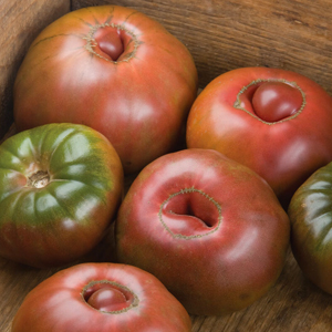 Indeterminate tomato Black Krim