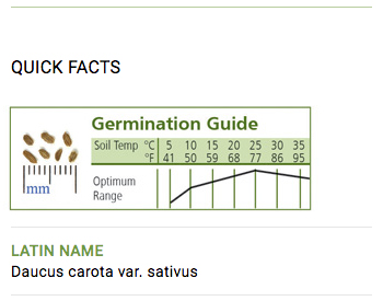 Carrot Seed Germination Guide
