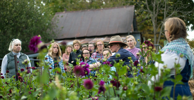 Hilltop Community Farm & Five Green Acres Floral Workshop