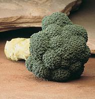 Marathon Broccoli