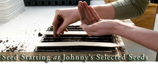 Seed-starting at Johnny's - Learn 3 systems for indoor, professional quality seedling production.