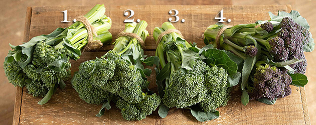 Mini & Sprouting Broccoli Planting Program