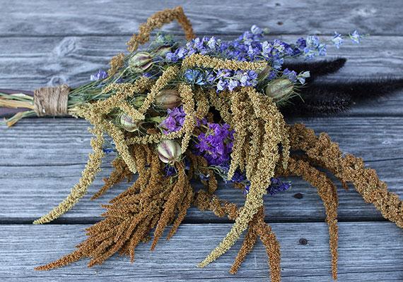 Amaranth, larkspur, nigella, and statice