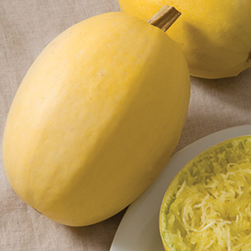 How to Grow Spaghetti Squash