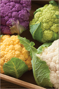 Cauliflower Varieties for Moderate Heat