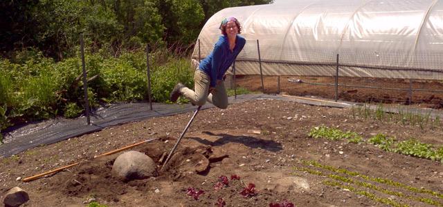 Gaining Efficiency on the Farm