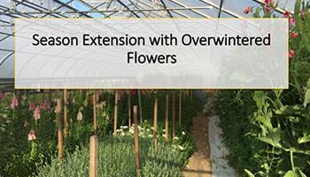 Overwinter Flowers Webinar • Recap/Slideshow • PDF