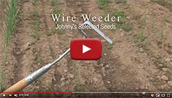 Wire Weeder Demo