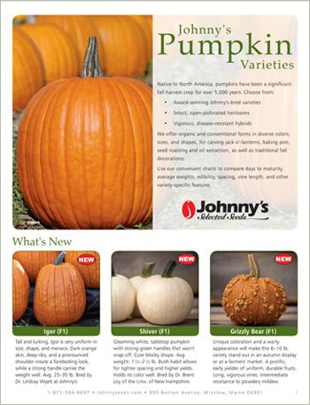 Johnny's Pumpkin Types & Varieties • 4-pp Brochure • PDF