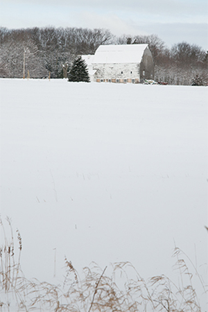Winter view up the hill from the research farm