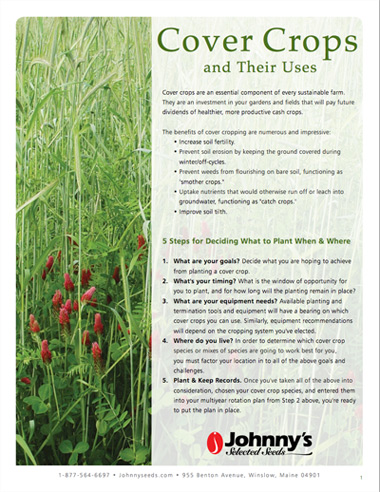 Cover Crops & Their Uses