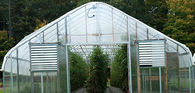 Why Grow In A Greenhouse Basics Advantages Of Protected Culture