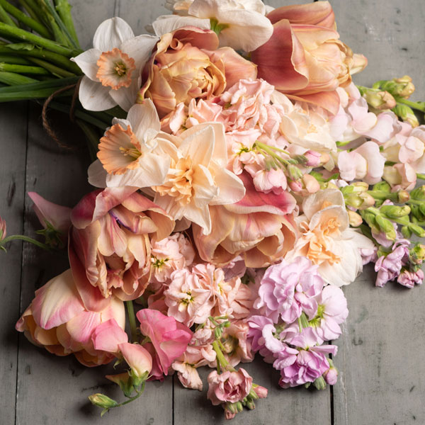 Shop BLUSH Flowers