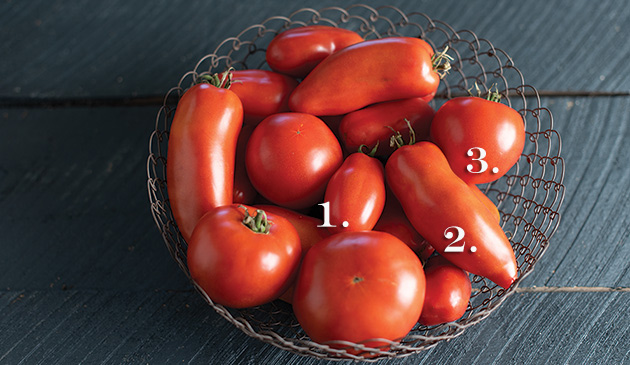 3 Improved Tomatoes from Our Open-Pollinated Project: Blue Beech, San Marzano, and Wisconsin 55