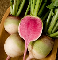 Red Meat / Watermelon Radish