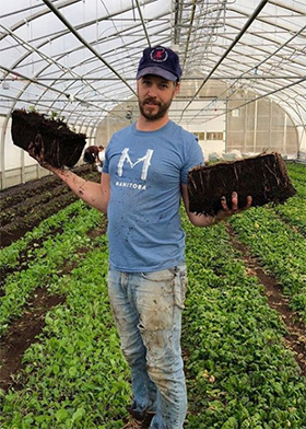 Jean-Martin transplanting strawberries in February in Quebec