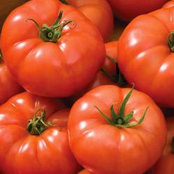 Rebelski = Best All-Round Greenhouse Tomato