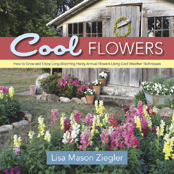 Cool Flowers, by Lisa Mason Ziegler