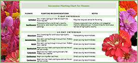 Interval Planting Chart for Herbs