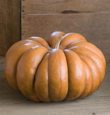 Musque de Provence Pumpkin