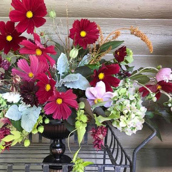 Sandy Figel, Verbena Floral