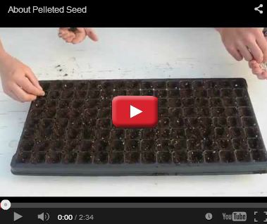 About Pelleted Seed