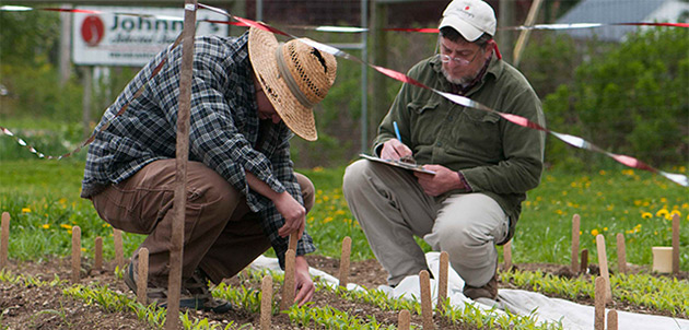 Plant Variety Trials at Johnny's Selected Seeds