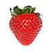Seascape Strawberry Harvest Program