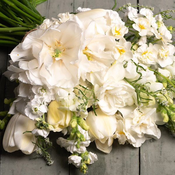 Shop WHITE Flowers