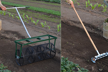 Seedbed Roller & 4-Row Seeder