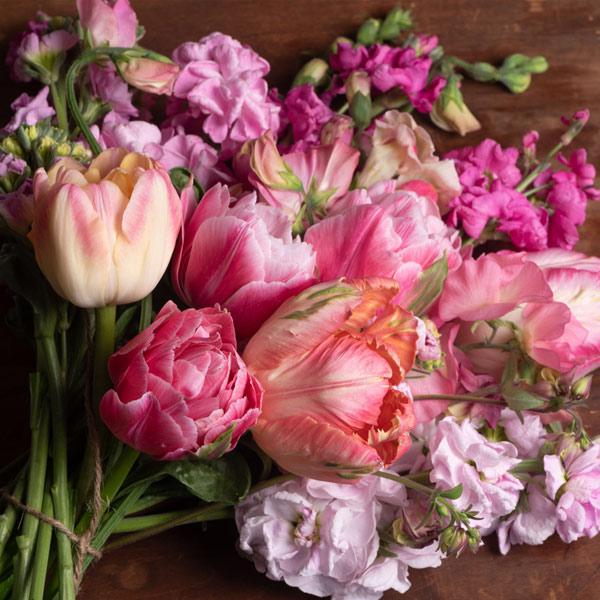 Shop PINK Flowers
