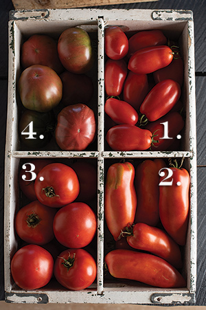 Box of 4 OP tomato heritage varieties from Johnny's.